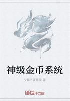 神级金币系统封面