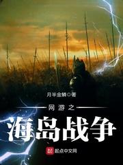 网游之海岛战争封面