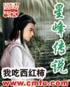 星峰传说封面